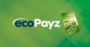 Ecopayz İle Para Yatırılan Bahis Siteleri